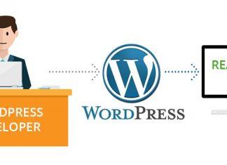 tuyển lập trình viên wordpress tại TPHCM 2018